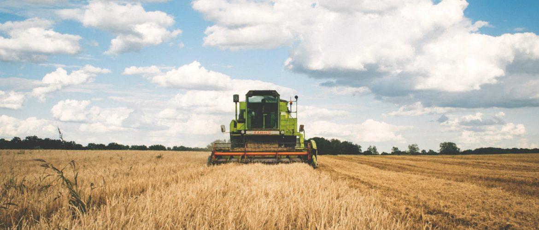 Аграрный перевод: принципы и особенности